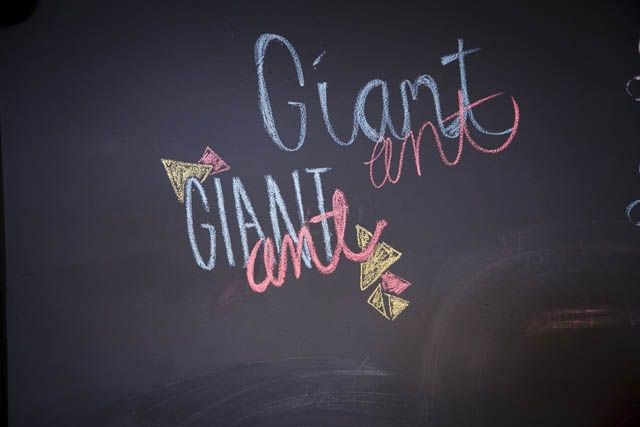 Giant Ant Logo written in chalk on a black board